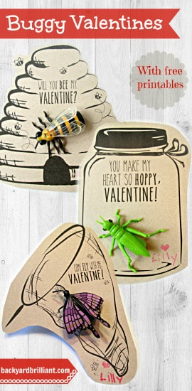 """""""Will you Bee my Valentine?"""" …and other Handmade Buggy Valentines"""