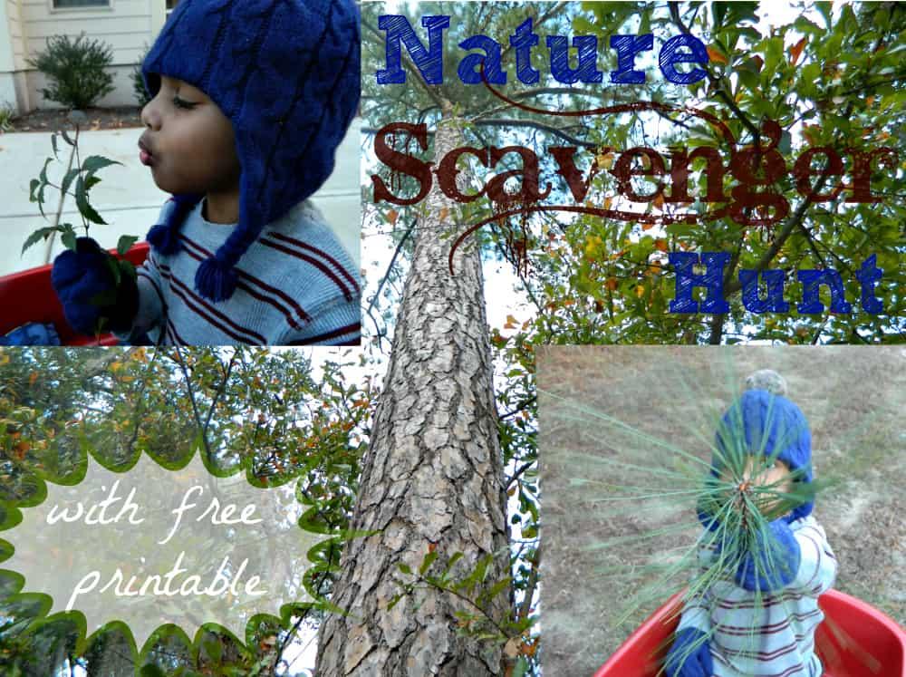 naturescavengerhuntforwinterwithpreschooler01