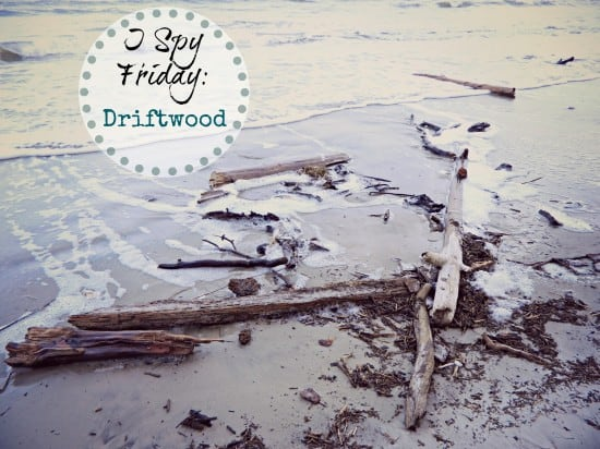 I Spy Friday: Driftwood