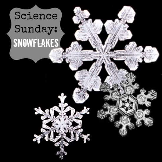 Science Sunday: Snowflakes