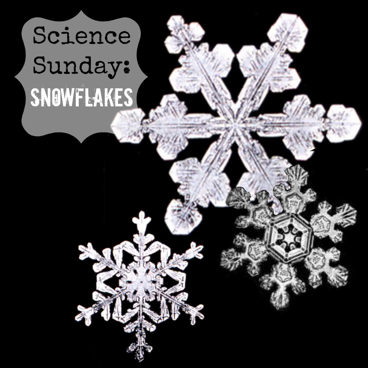 science sunday:  snowflakes