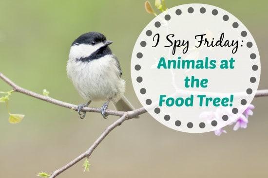 I Spy Friday: Animals at the Food Tree!