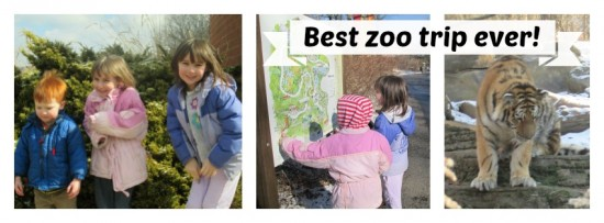 Best Zoo Trip Ever!