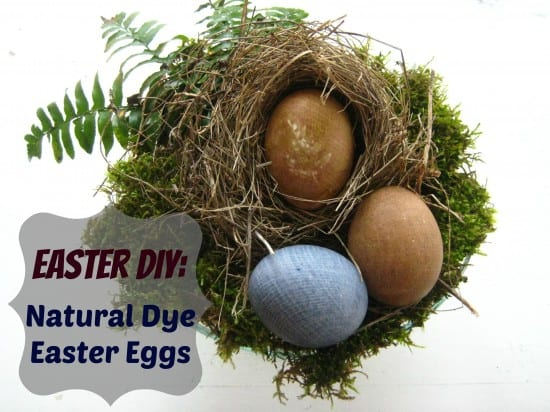 Easter Eggs and Natural Dyes