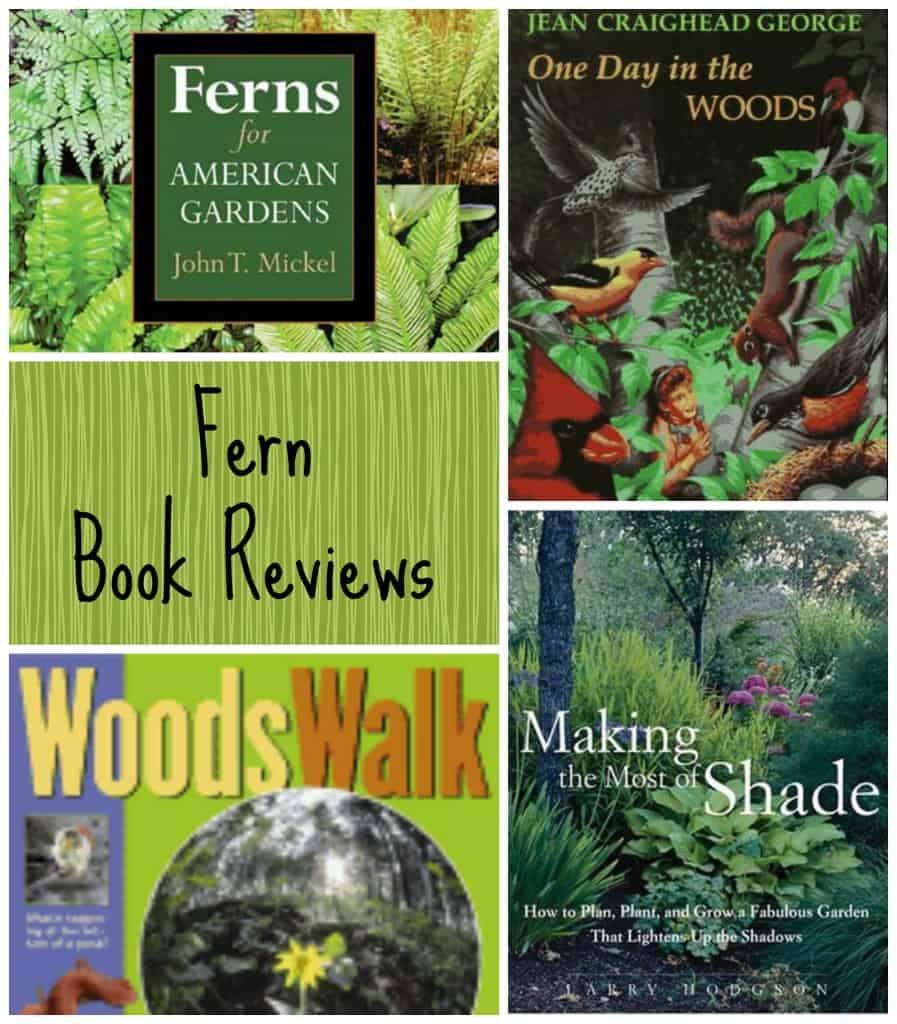 Fern book review final