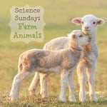 Science Sunday: Farm Animals