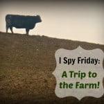 I Spy Friday: A Trip to the Farm!